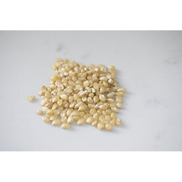 Amish Country Popcorn - 6 LB Medium White Kernels - Old Fashione...