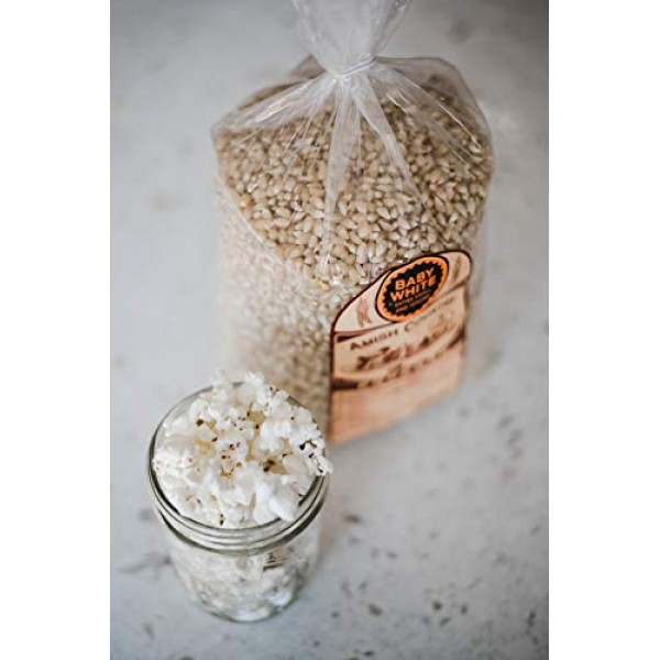 Amish Country Popcorn - Baby White - Small & Tender Popcorn - Ol...