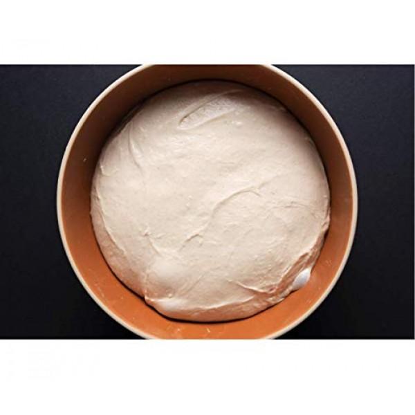 Antimo Caputo Gluten Free Pizza Flour 2.2lb - All Natural Multi ...