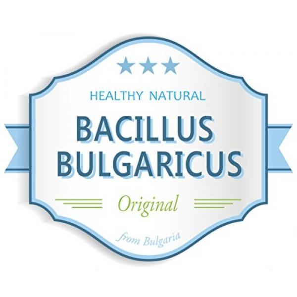 Bulgarian Yogurt Starter Makes 8 Gal / 30 L