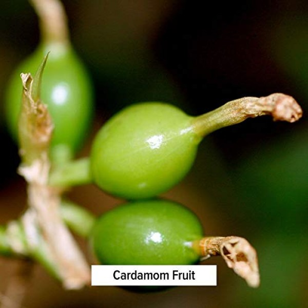 Banyan Botanicals Cardamom Powder - Certified Organic, 1/2 lb - ...