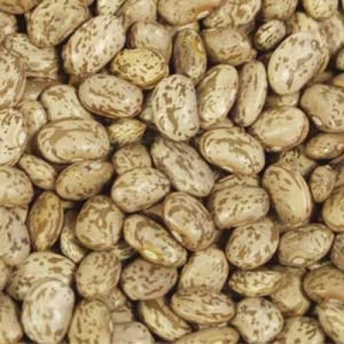 Bulk Peas And Beans Organic, 100% Organic Pinto Beans, 5 Lbs