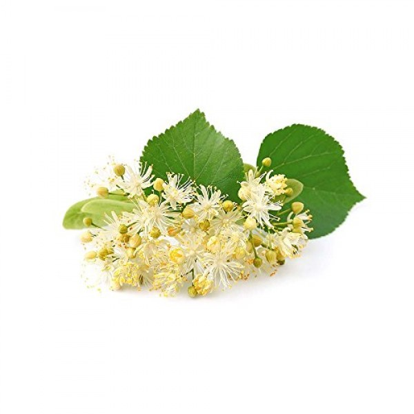 100% Pure and Organic Biokoma Linden Dried Leaves and Flowers He...