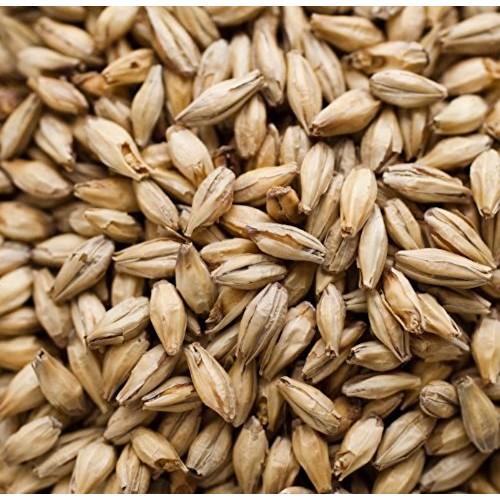 Briess Vienna Brewing Malt Whole Grain 1lb Bag