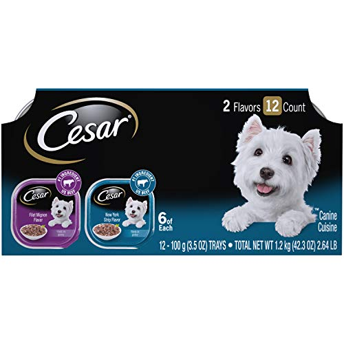 CESAR Soft Wet Dog Food Filets in Gravy Filet Mignon & New York ...