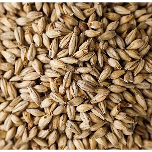 Briess 2-Row Brewers Malt - 10 LB, Crushed