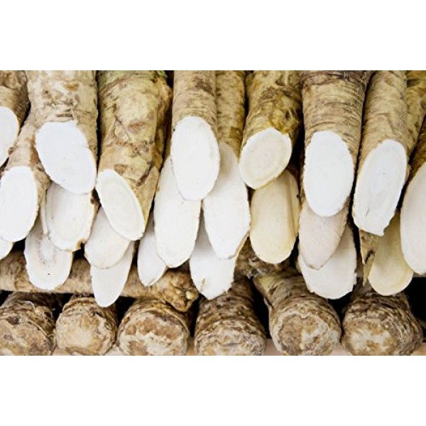 Country Creek LLC Horseradish Root, Sauget, 8 Ounces Sold by We...