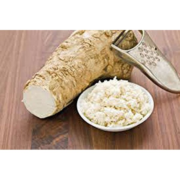 Country Creek LLC Horseradish Root, Sauget, 2 Ounces Sold by We...