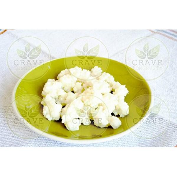 Live Organic Milk Kefir Grains SCOBY - 1 TBSP by Crave Longevity