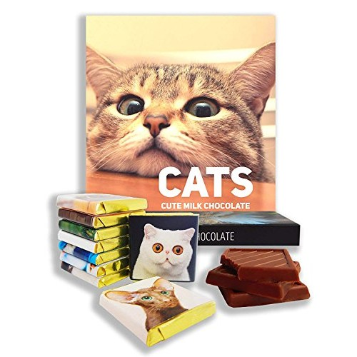 CATS a Chocolate gift set for all cat lovers, 5x5in, 1 box Dome...