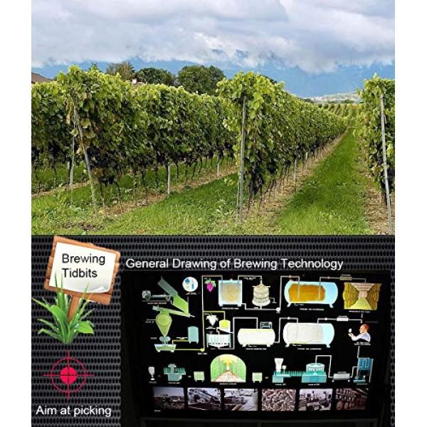 3PCS Yeast 5g home-brewed wine dedicated 18% vol wine yeast Ferm...