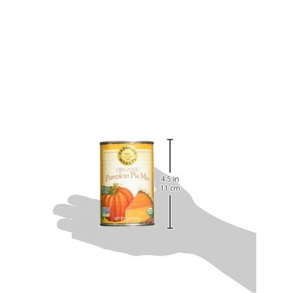 Farmers Market Pumpkin Puree 100% Organic 3x15oz