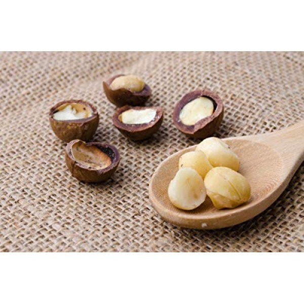 Organic Macadamia Nut Pieces, 1 Pound - Non-GMO, Unsalted, Unroa...