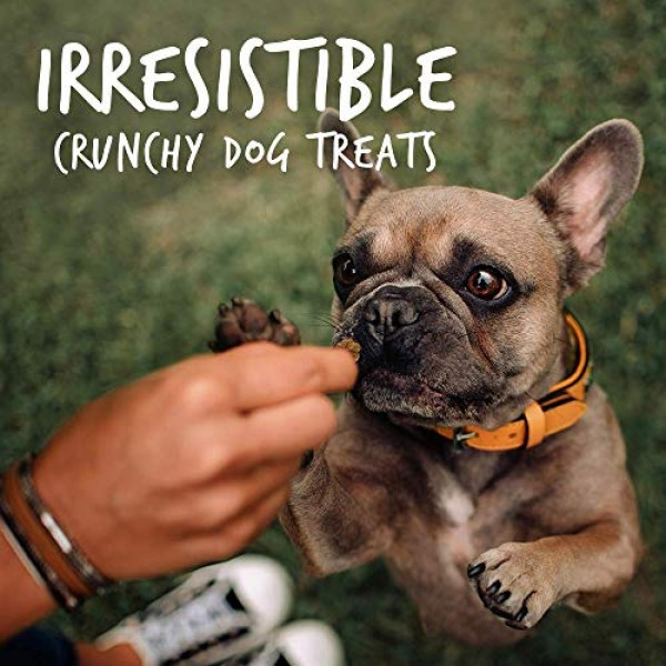 Fruitables Dog Treats | Dog Training Treats | Low Calorie Crunch...