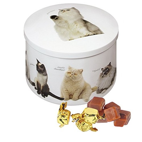 Gardiners Of Scotland Cat Tin filled with Luxury Traditional Sco...
