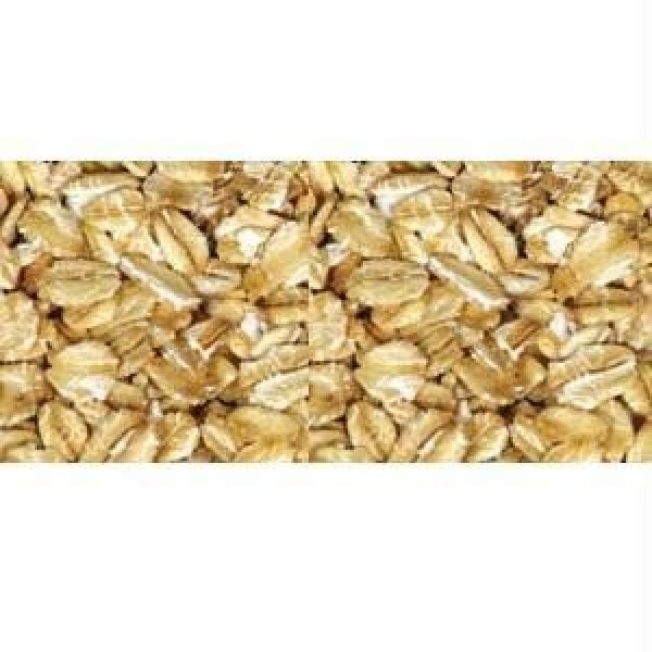 Grain Millers Organic Thick Rolled Oat, 50 Pound - 1 each.