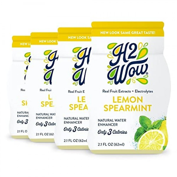 H2wOw Water Enhancer Drops-Lemon Spearmint Flavored Water 4 pack