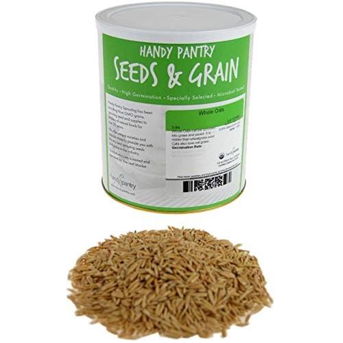 3.5 Lb Non-GMO Organic Whole Oat Groats w/ Husk - Gluten Free ...