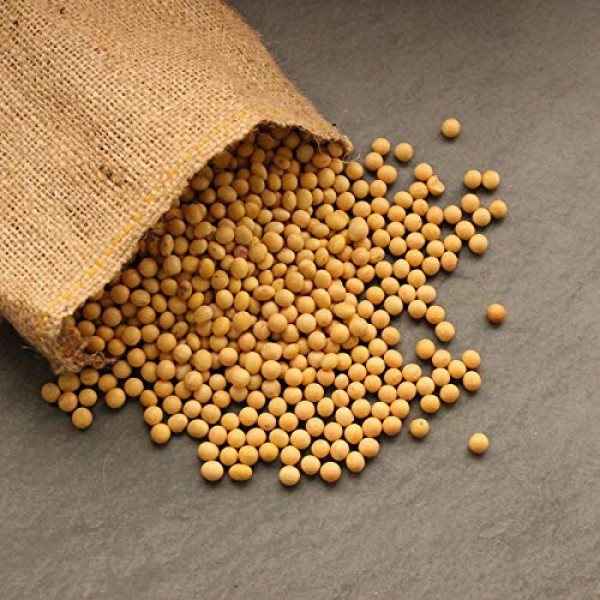 Certified Organic Dried Yellow Soybeans - 1 Lb - Perfect for Use...