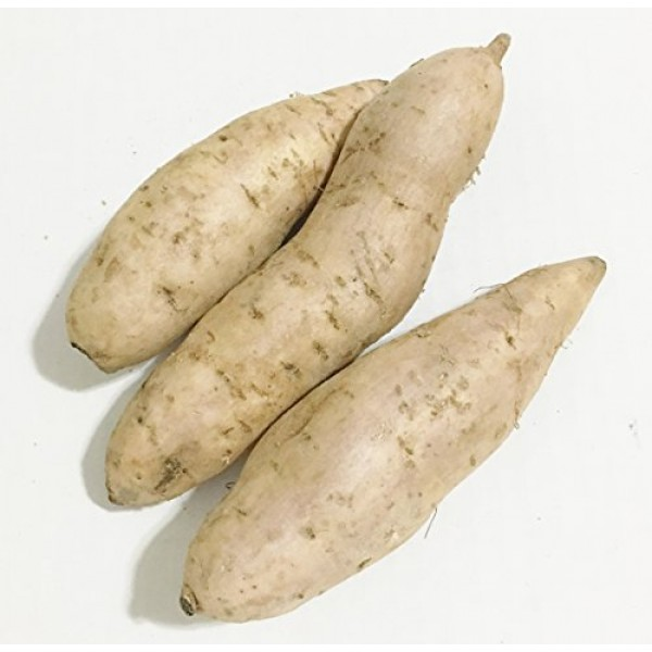 Fresh Purple Sweet Potatoes-2LBS