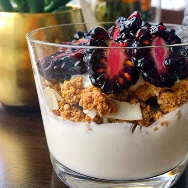 Julian Bakery ProGranola Cereal | Vegan | Vanilla Cluster | 12...