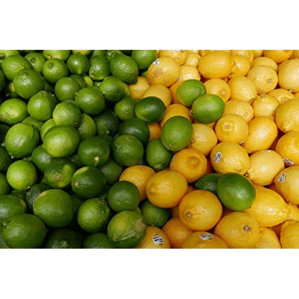 Kejora Fresh Lemons + Fresh Limes Bundle 3 lb lemon + 3 lb lim...