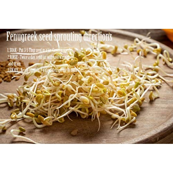 Fenugreek Seeds Whole - 8Oz
