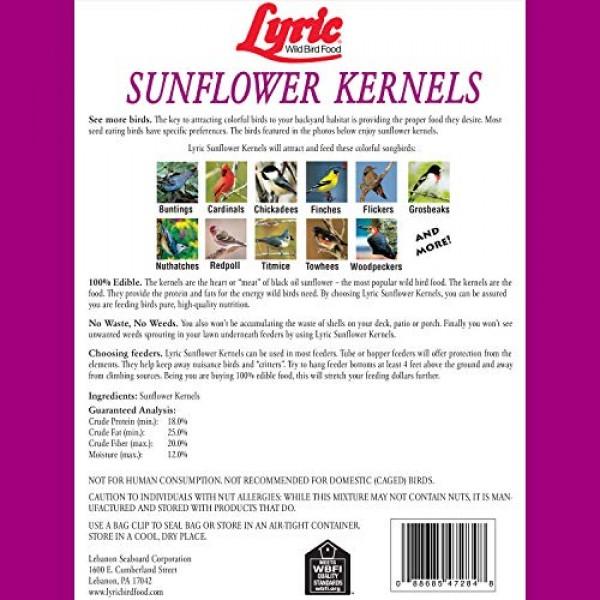 Lyric 2647446 Sunflower Kernels - 25 lb.