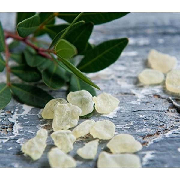 Chios Mastiha Tears Gum Greek 100% Natural Mastic Packs From Mas...