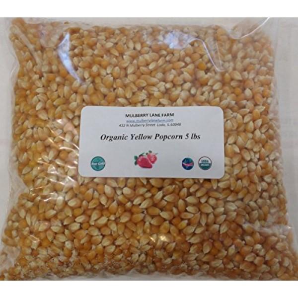 Yellow Popcorn Popping Corn, 5 lbs five lbs Kernels, USDA Cert...