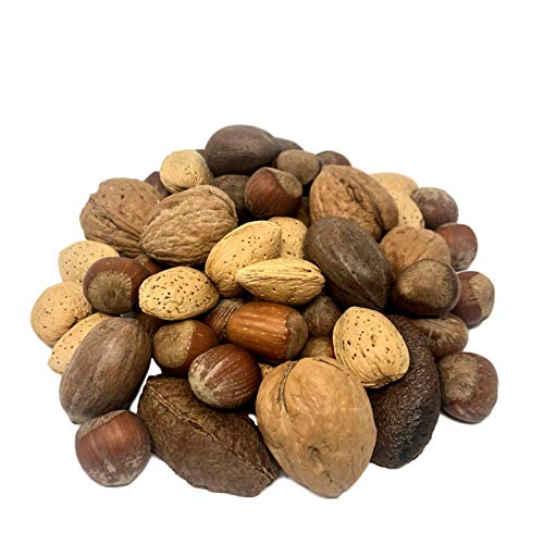 NUTS U.S. – Mixed Nuts In Shell Almonds, Walnuts, Hazelnuts, Pe...