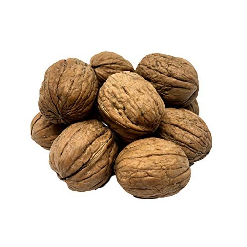 NUTS U.S. - Walnuts In Shell | Grown and Packed in California | ...