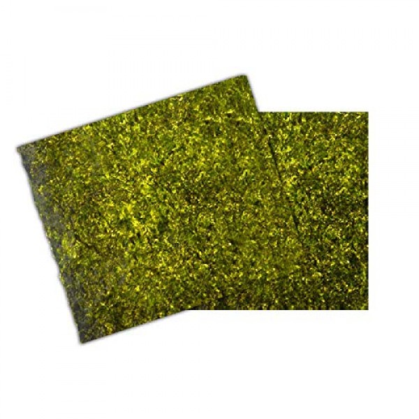 OUYANGHENGZHI Dried Nori Seaweed Slices for Making Sushi Zi Cai ...