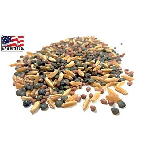 HIGH Germination Seeds:2X Micro Green lid +24G 600 Se : Daikon K...