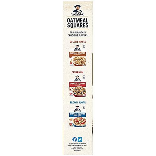 Quaker, Oatmeal Squares, Honey Nut, 14.5 Oz