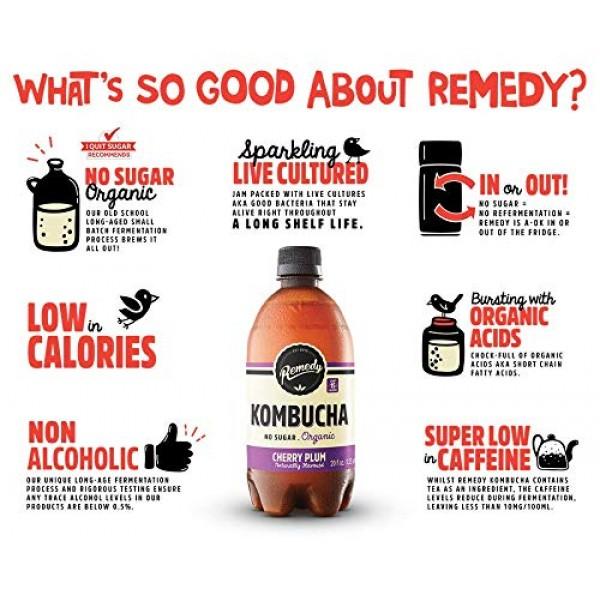 Remedy Raw Organic Kombucha - Sparkling Live Cultured Drink - Su...