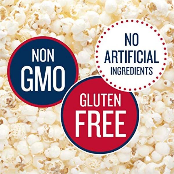 SkinnyPop Original Popped Popcorn, Individual Bags, Gluten Free ...