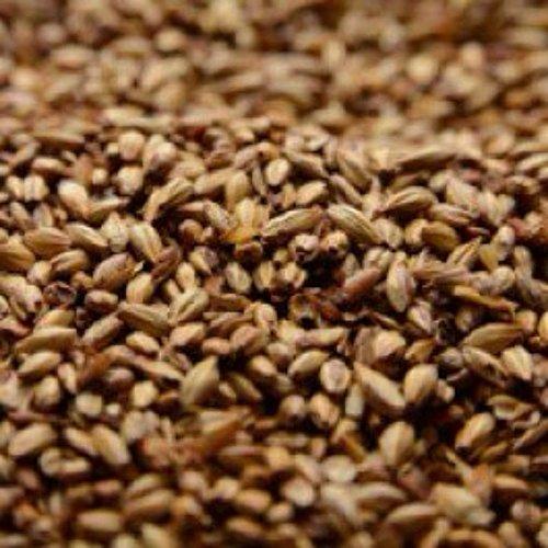 Briess 2-Row Caramel 40L Uncrushed Malt - 1 lb. Bag