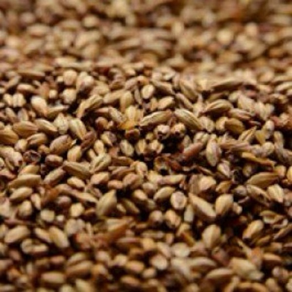 Briess 2-Row Caramel 40L Uncrushed Malt - 1 lb. Bag