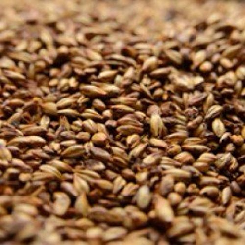 Briess 2-Row Caramel 80L Crushed Malt - 1 lb. Bag