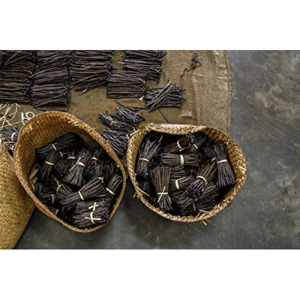 10 Large Tahitian Vanilla Beans Grade B Pods for Baking, Brewing...