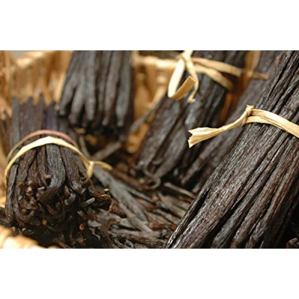 12 Large Tahitian Vanilla Beans Grade A Pods for Baking, Extract...
