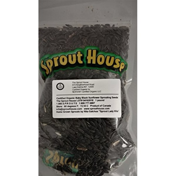 The Sprout House Organic Sprouting Seeds Baby Black Sunflower 1 Lb