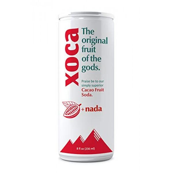 Xoca Prebiotic Soda - Original 12 Pack Healthy Sparkling Bever...
