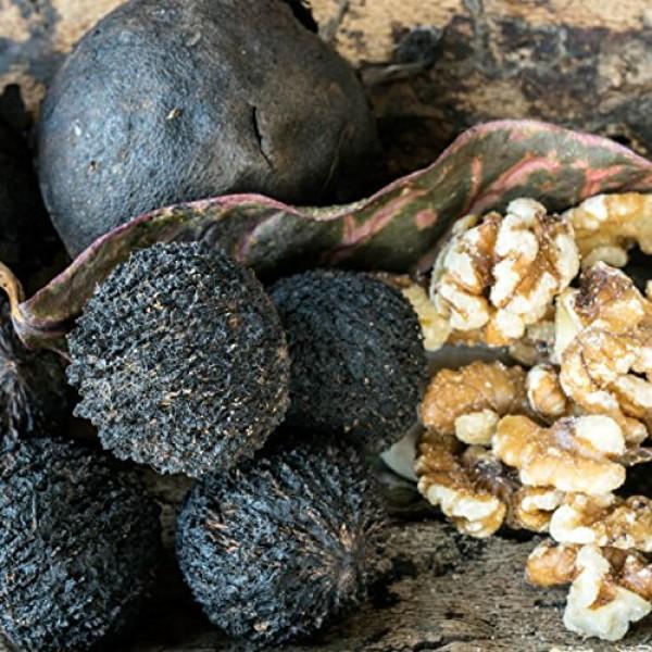 Organic Black Walnut Hull Powder 8 oz in tightly seal Jar