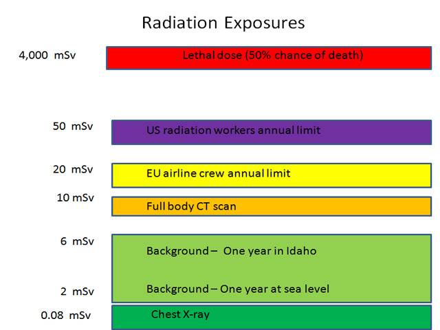 Radiation Exposure on Food in Japan