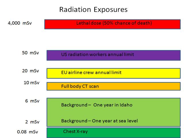 Radiation Exposure on Food in Japan
