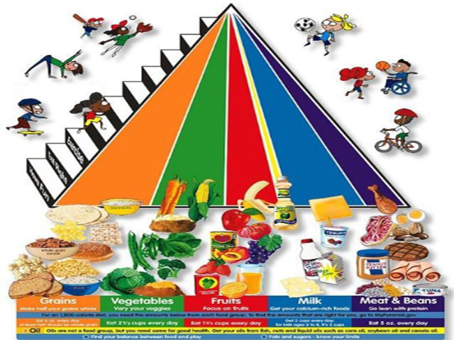 The Food Pyramid Made Better - Grocery.com