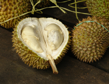 weird-fruit-durians